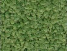 Fıstık Yeşil | Duvardan Duvara Halı