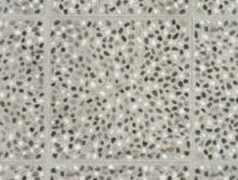 Plank Pebble Stone | Pvc Yer Döşemesi