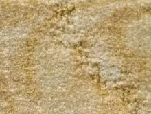 SCROLL HARDAL | Duvardan Duvara Halı